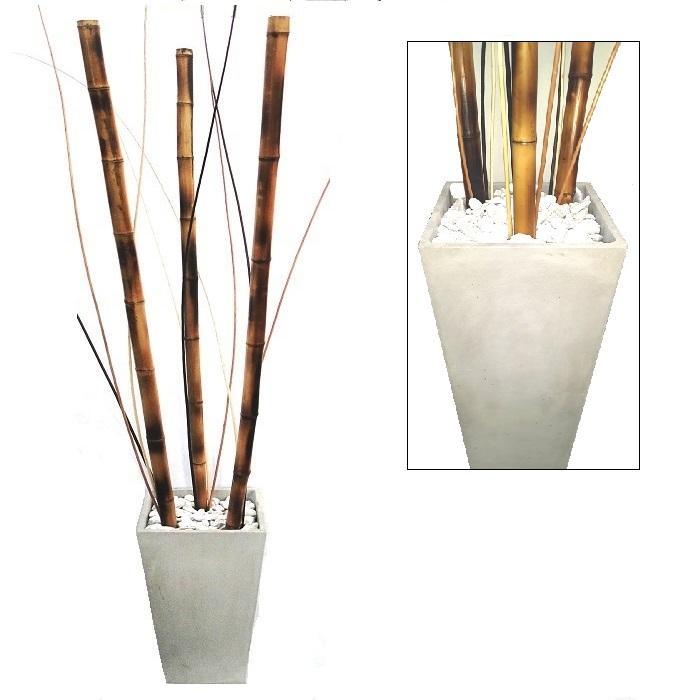 Bambu Decoracion Comprar ~ Vivero Bambu  Venta de Plantas y Macetas